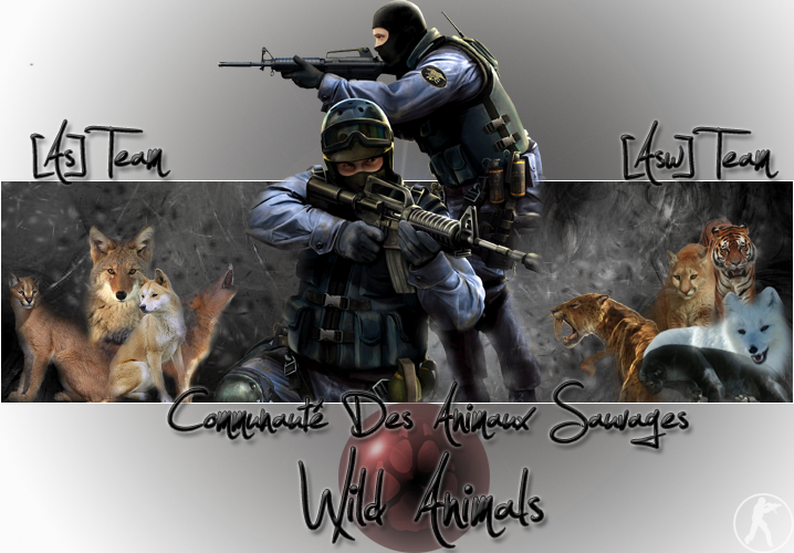 Communauté Wild Animals, Counter Strike Source